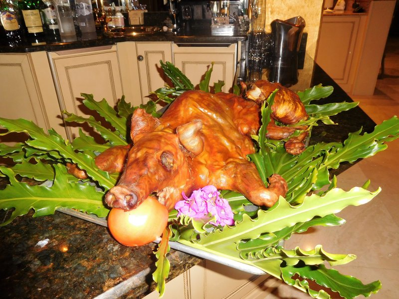 Swine and Wine Party at The Vogt's 003